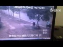 Appalling Man in central China s Changsha chops down a tree only to steal the bike locked on it