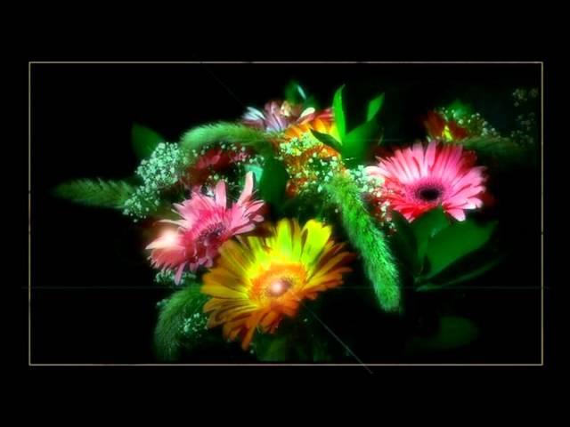 ♫♫♫ Ein Musikalischer Blumenstrauß ᴴᴰ