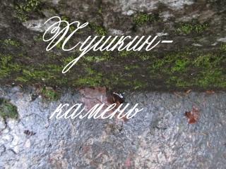 ПУШКИН КАМЕНЬ заявка на создание полнометражного документального фильма