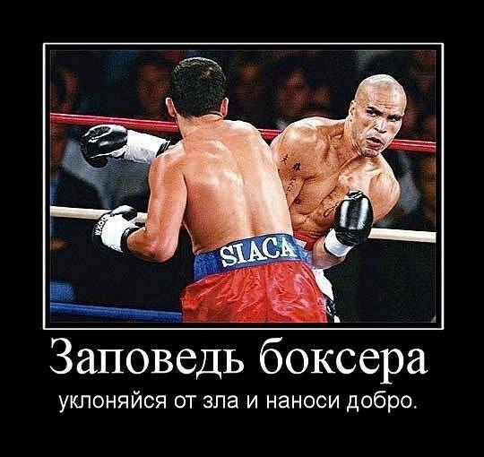 Картинка заповедь боксера