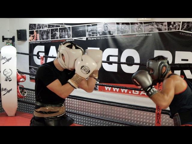 Alejandro Moya vs Julo Giner Training sparring round 1