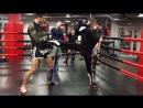 ФФС-Золотой «Тайский бокс»