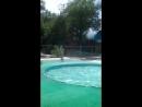мой сын купается