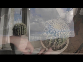 Drum на кактусе
