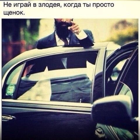Тамерлан Гадисов