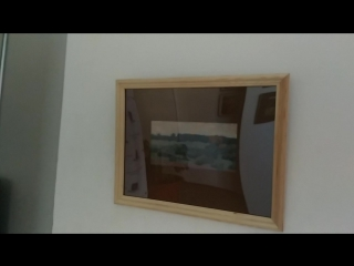 Панорама выставки в Стрельне