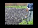 Сидераты, удобрение почвы, раскисление доломитовой мукой.