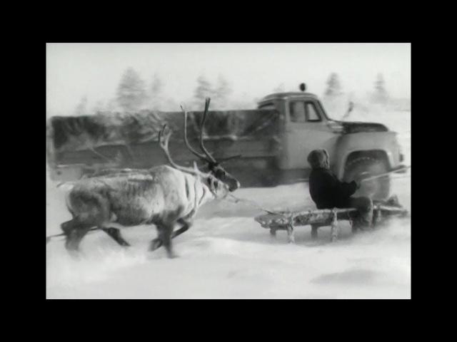 Грузовик ГАЗ 53С
