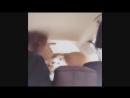 Классные приколы про животных. Смешная подборка с котами и кошками. Самые смешные видео online-video-cutter 1