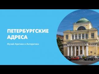 Петербургские адреса Музей Арктики и Антарктики