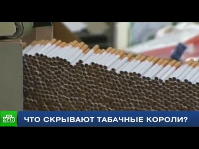 Репортер НТВ выяснил правду о составе сигарет
