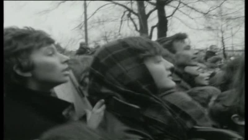 The Hollies — Im Alive (Rooster 27-01-1966) = 40 Jaar Top 40 1965-1966