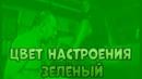 Frixy Цвет настроения зелёный