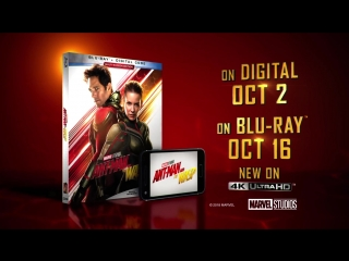 Ant-man & the wasp | blu-ray trailer