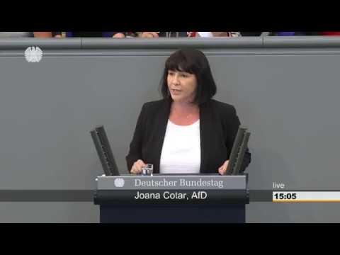 Joana Cotar AFD Der Irrsinn der Datenschutzgrundverordnung ist kaum zu toppen