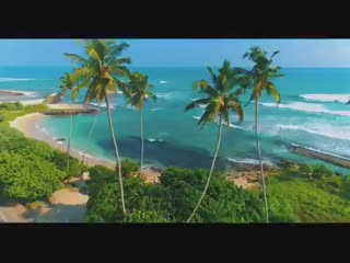 earth's_favorite_island!_that's_So_Sri_Lanka!_😍_🌴☀️🌊.mp4