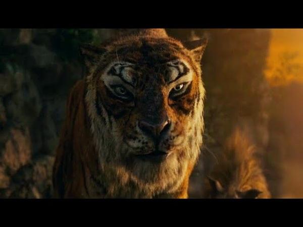Shere Khan Vs Akela 2018 Scenes Mowgli Legend Of The Jungle 2018 Movie Clips HD