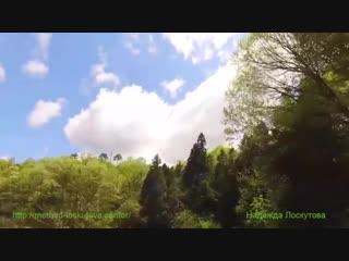 Нежная, лечебная музыка успокоит нервную систему, а красивое видео для Души.mp4