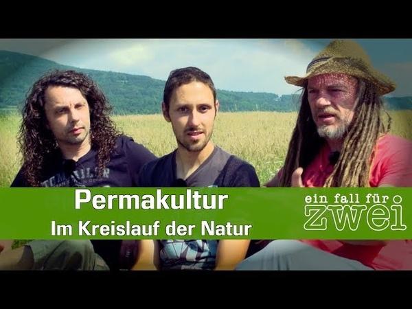 Permakultur Im Kreislauf der Natur Daniel Frank Ein Fall Für Zwei E10