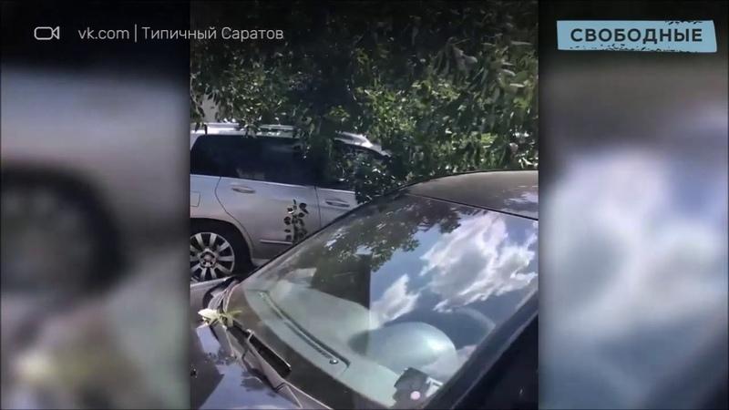 В центре Саратова дерево упало на человека и машину