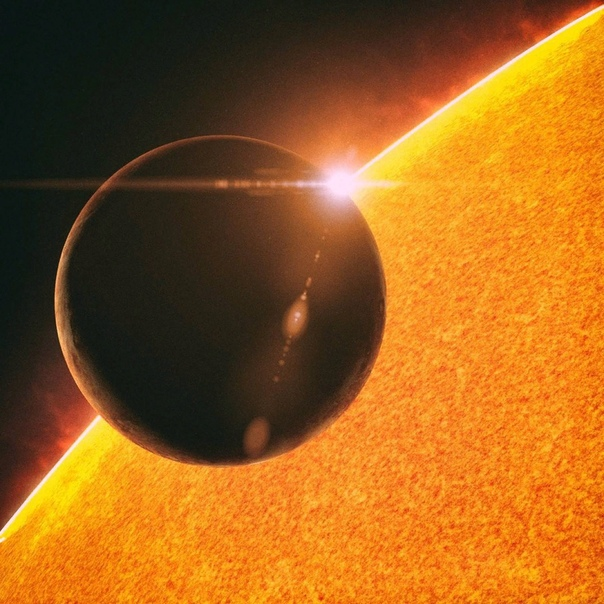 транзит меркурия по диску солнца фото черный терьер относится