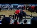 360°Таиланд Выступление Слонов сад Нонг Нуч Thailand Performance of the Nong Nooch Elephant Garden