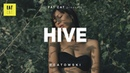(free) Old School boom bap type beat x Chill Dark Hip Hop instrumental | 'Hive' prod. by BEATOWSKI