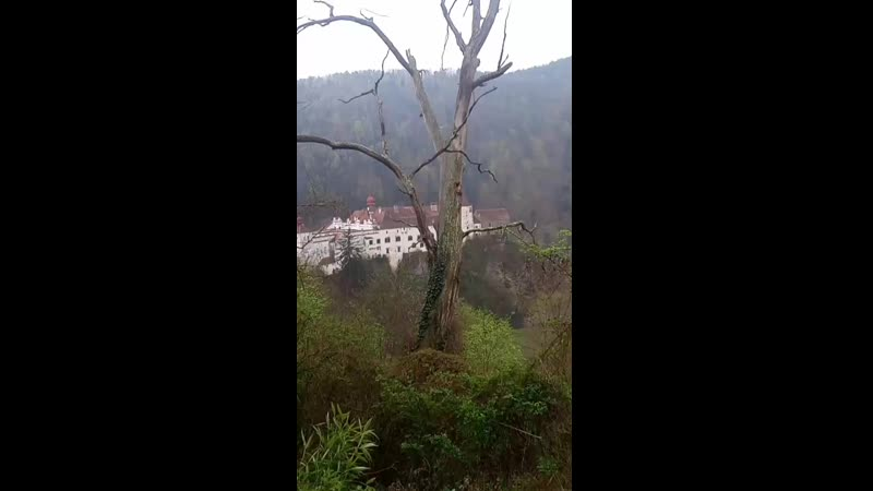 замок герберштейн