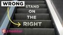 The Unseen Inefficiency of Escalator Etiquette Cheddar Explains