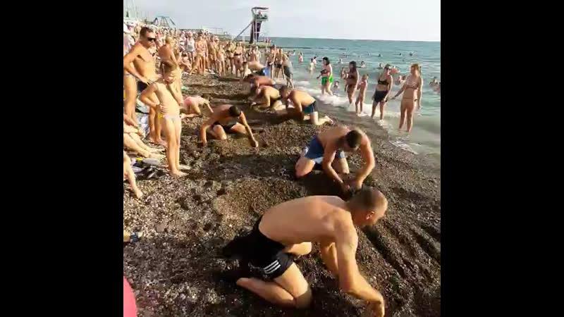 Хороший тамада. И конкурсы интересные. Пляж Барракуда на связи
