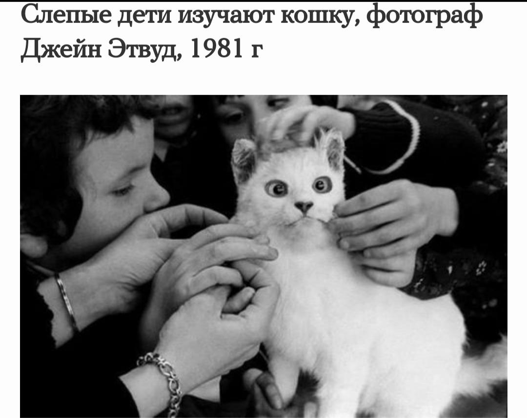Интересные фотографии прошлого