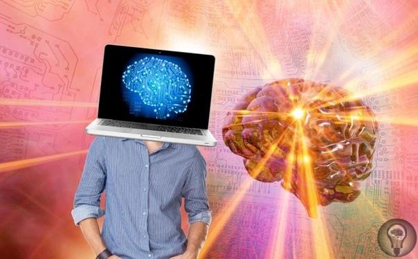 Нельзя использовать на 5% и прочие мифы о мозге