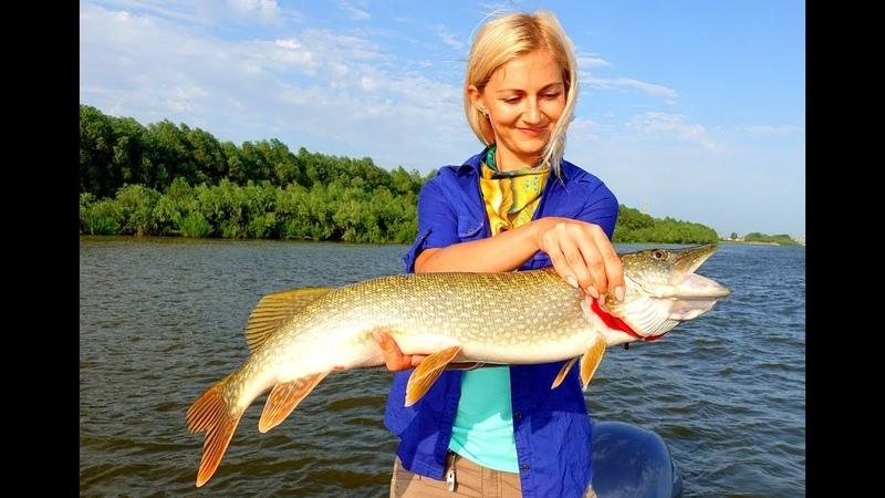 Катя Татуревич я просто однажды поймала рыбу Часть 1