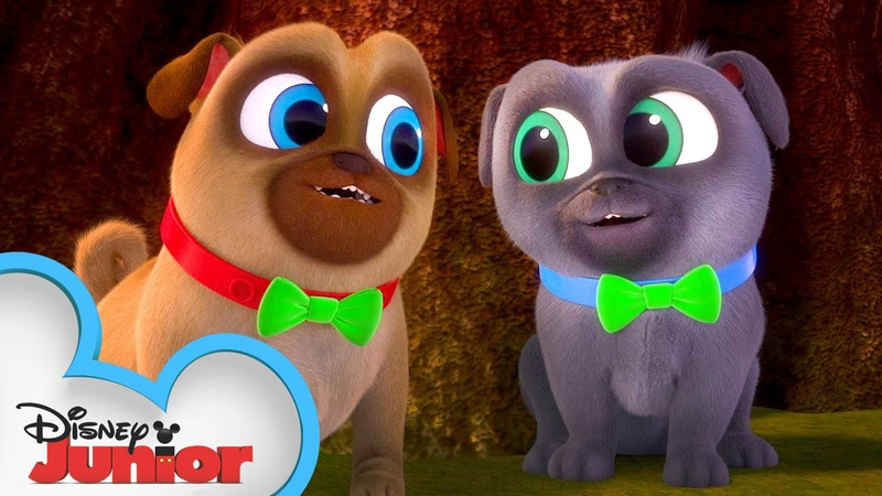 Bingo and Rolly Look for a Clover 🍀 Puppy Dog Pals Disney Junior