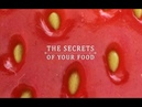 The Secrets of Your Food S01 - Ep02 A Matter of Taste