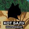 20 МАРТА/Кот Балу/Екатеринбург