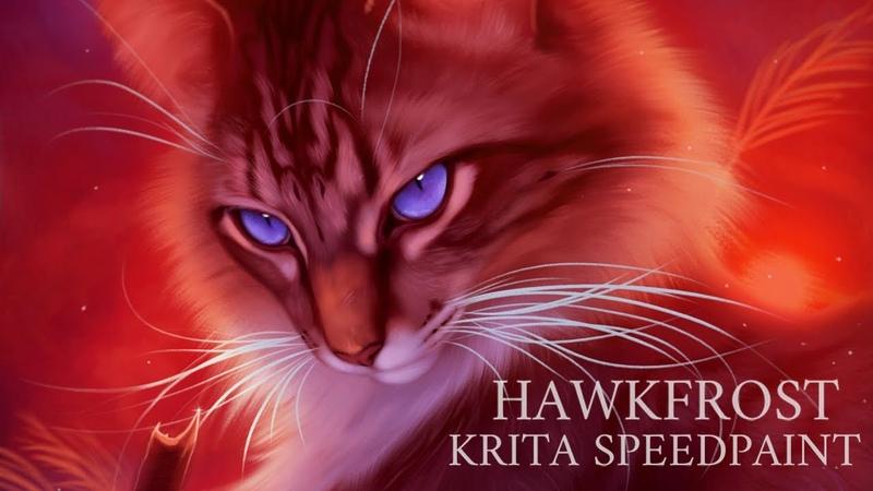 Hawkfrost | Krita Speedpaint