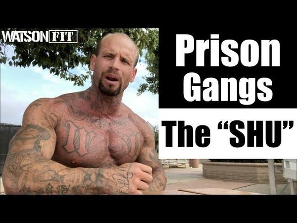 Prison Gangs The SHU