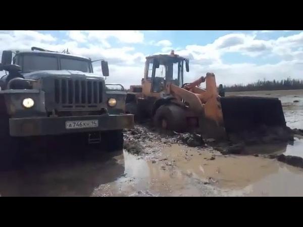 Все встряли в болоте машины застряли и некому уже спасать