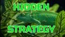 Торговый робот Форекс HIDDEN EA / Expert Advisor forex