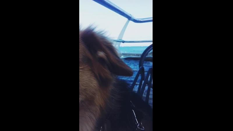 Жуня первый раз на море