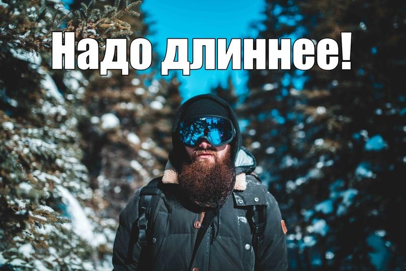 Борода зимой, изображение №3