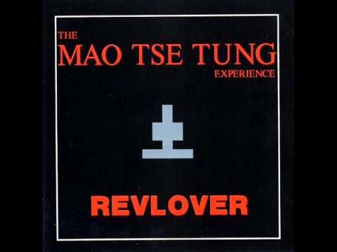 The Mao Tse Tung Experience - Irregular Times 1991