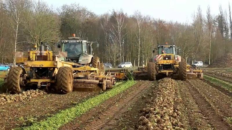 WORLD BIGGEST BEET Harvester 24 Rows JPS Soyez