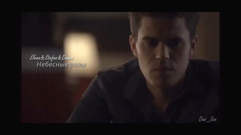 Elena Stefan Damon Небесные розы Дневники вампира The Vampire Diaries