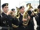 77-я отдельная гвардейская бригада морской пехоты. часть 2