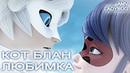 КОТ БЛАН - ЛЮБИМКА клип @NILETTO | AMV Ladybug | Леди баг и супер кот 3 сезон 23 серия