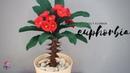 HOW TO MAKE FELT FLOWER EUPHORBIA | Tutorial cara membuat bunga euphorbia dari kain flanel