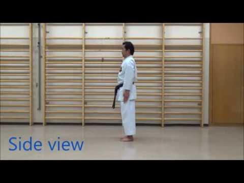 Kata Kaishu Sanchin Karate Shito ryu