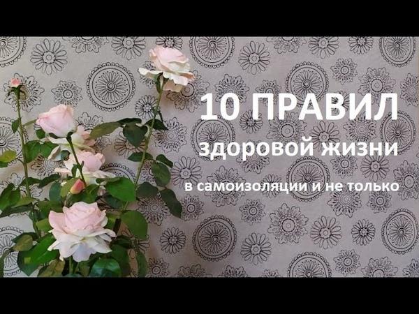 10 ПРАВИЛ ЗДОРОВОЙ ЖИЗНИ в самоизоляции и не только